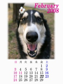 calendar200802.jpg