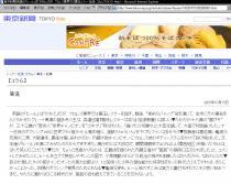 東京新聞20071013