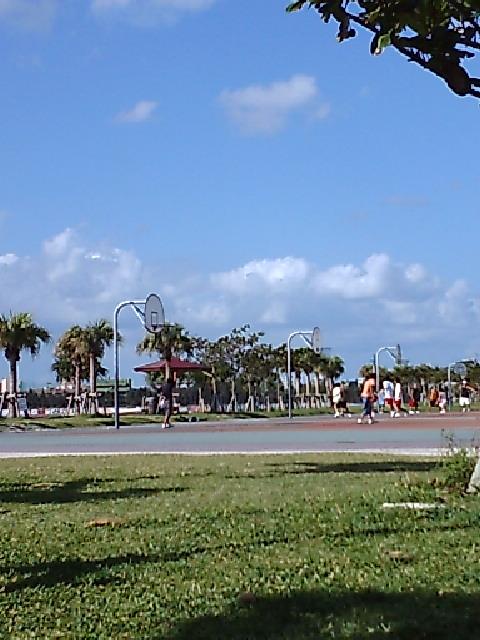 アラハビーチ#1