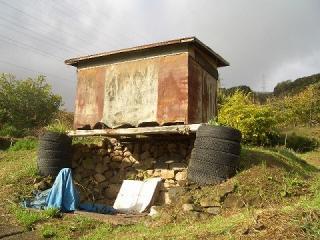 タイヤの土台の小屋8619