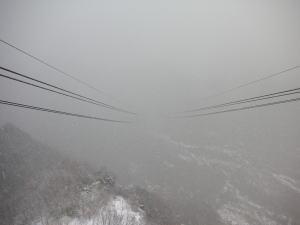200611133.jpg