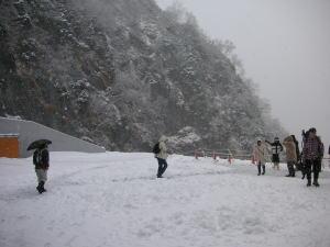 200611136.jpg