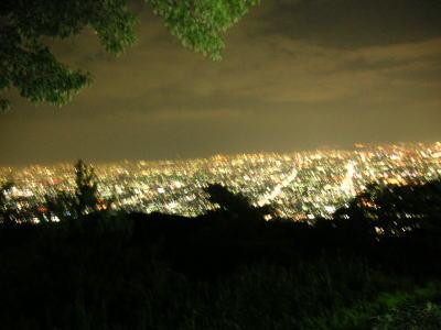200708275.jpg