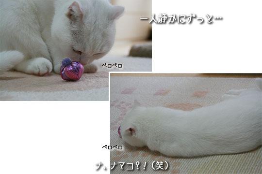 20081003-2-17.jpg