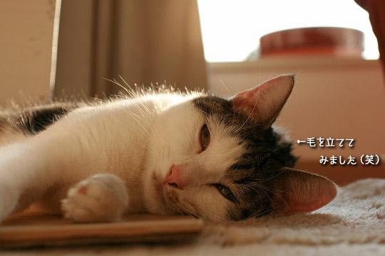 眠りに落ちる寸前9