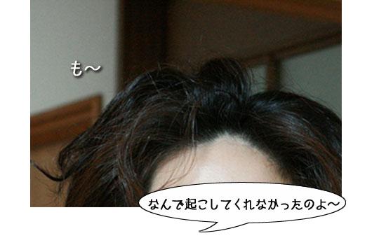 ゆきさんオハヨ!1