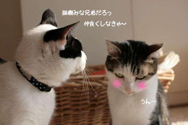 さすが福ちゃん!10