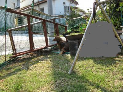 snap_fumi777_200910422330.jpg