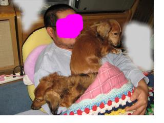 snap_fumi777_2009122205653.jpg