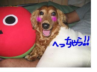 snap_fumi777_20096301443.jpg