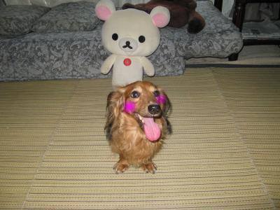snap_fumi777_200993224314.jpg