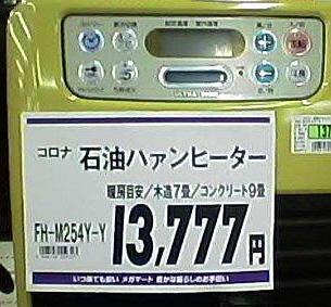 294.jpg