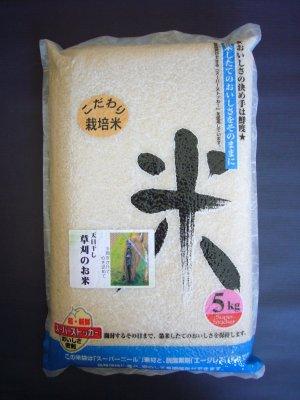 草刈のお米