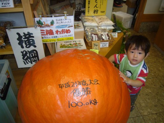 どでかぼちゃ