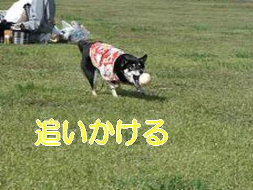 20071107160610.jpg