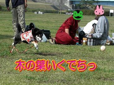 CIMG0211.jpg