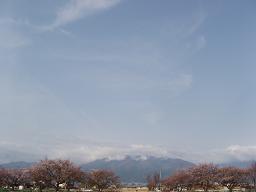 20060414a.jpg