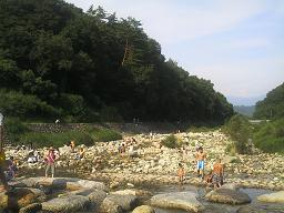 20070826a.jpg