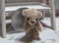b-bear1.jpg