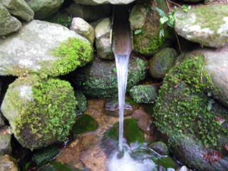 仁加木湧水