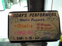Oxalis02.jpg