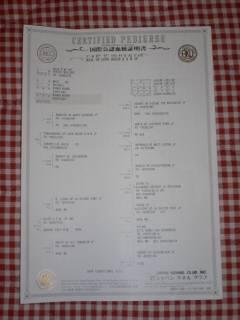 20050725_1.jpg
