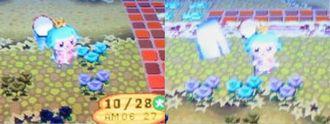 青バラ08102802