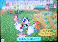 あっきぃc080929
