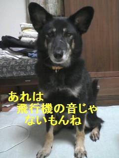 PA0_0021_20091005005414.jpg