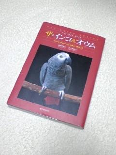 PA0_0074.jpg