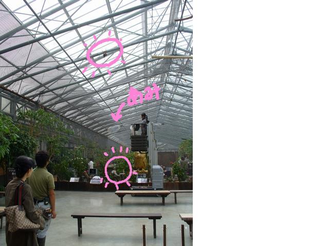 snap_galatia62_2009104193621.jpg