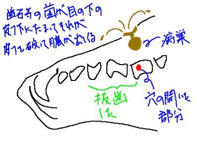 snap_galatia62_200940235223.jpg