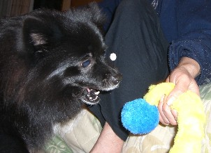 20071201-3
