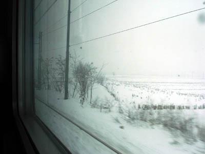 20060128055501.jpg