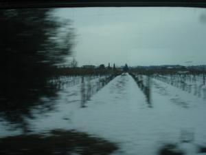 treno_verona02.jpg