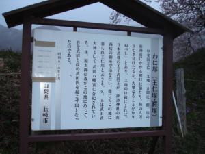 wanizuka5629.jpg