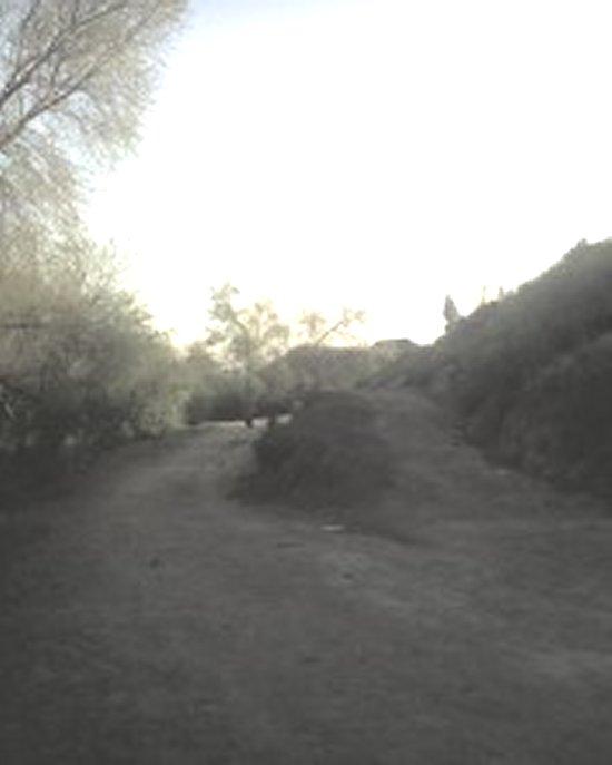 2008_0322_072.jpg