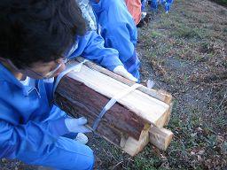 torii2009_0920AJ_256.jpg