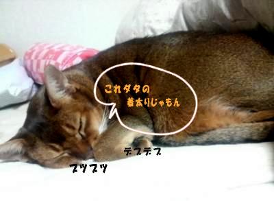 blog_genjun11.jpg