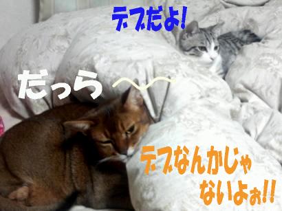 blog_genjun5.jpg
