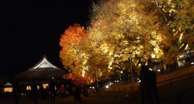 閑谷学校夜