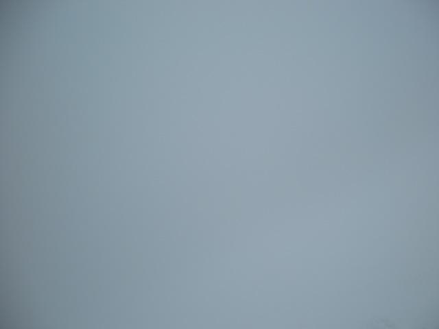 木落とし霧がぁぁぁ