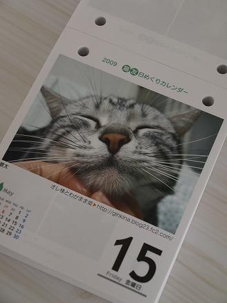 猫友日めくりカレンダー2