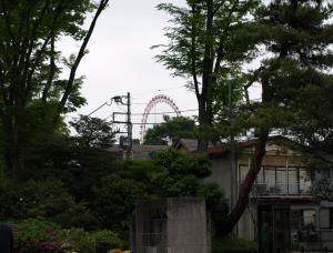 狭山湖 029
