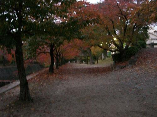 081117shukugawa (1)