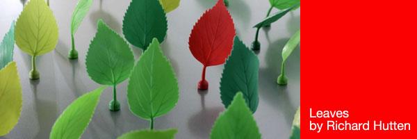 leavesfroblog.jpg