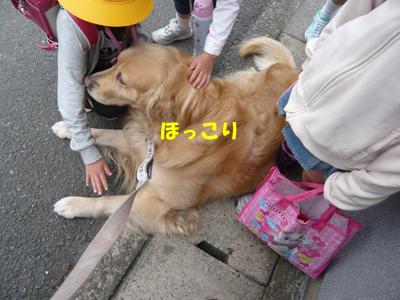 ぶP1010564