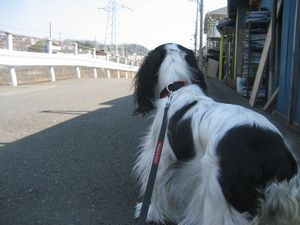 blogpictures 030