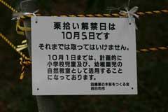 050830fs.jpg