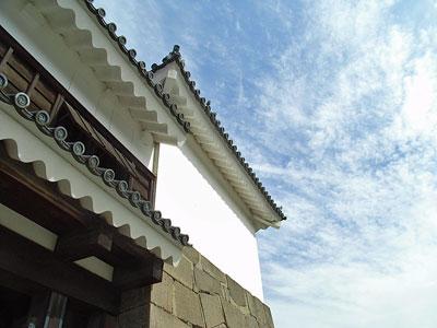 Tsuruga_14.jpg